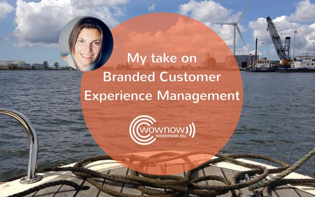 My take on Branded Customer Experience Management methodology by Sampson Lee